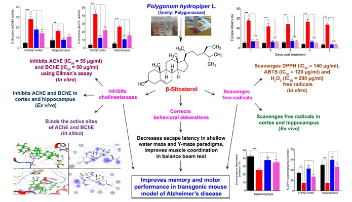 Anti-Alzheimer's Studies on β-Sitosterol Isolated from Polygonum hydropiper L