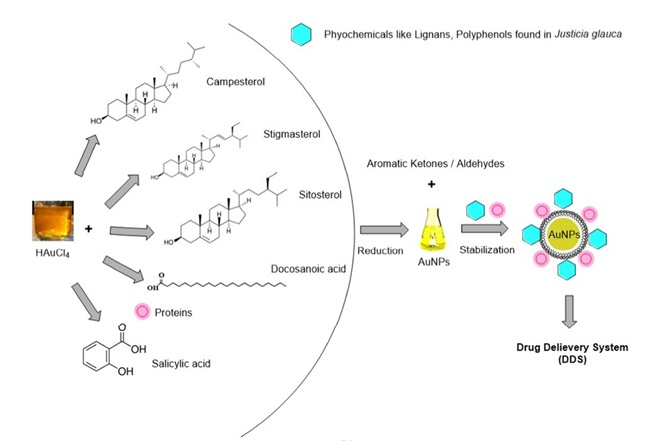 Antimicrobial Efficacy of Drug Blended Biosynthesized Colloidal Gold Nanoparticles