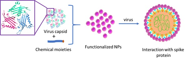 Phage Capsid Nanoparticles as Multivalent Inhibitors of Viral Infections